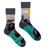 Mismatched Sokken Bears & Salmon_