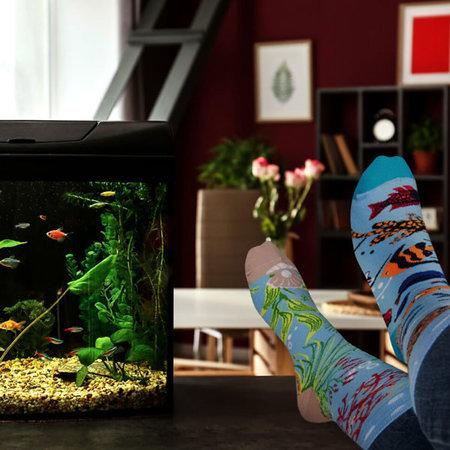 Mismatched Sokken Aquarium